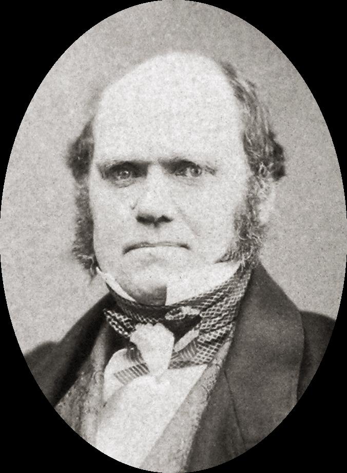 Charles Darwin, 1855