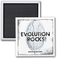 Evolution Rocks! Square Magnet