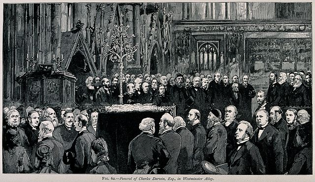 The funeral ceremony of Charles Darwin at Westminster Abbey, 26 April 1882.