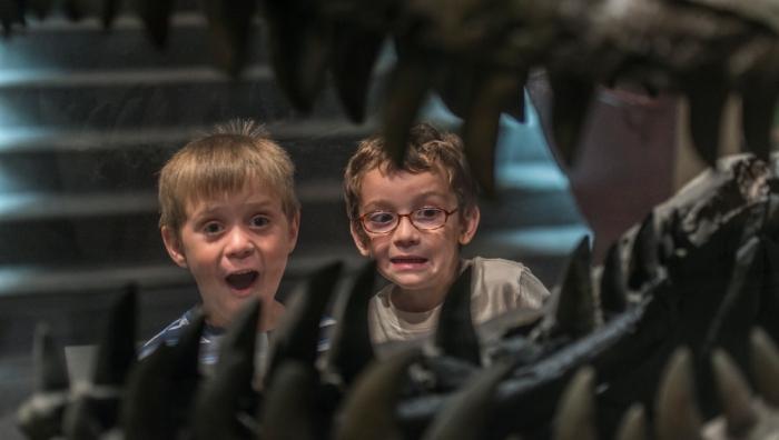 Kids reacting to a Tyrannosaurus rex