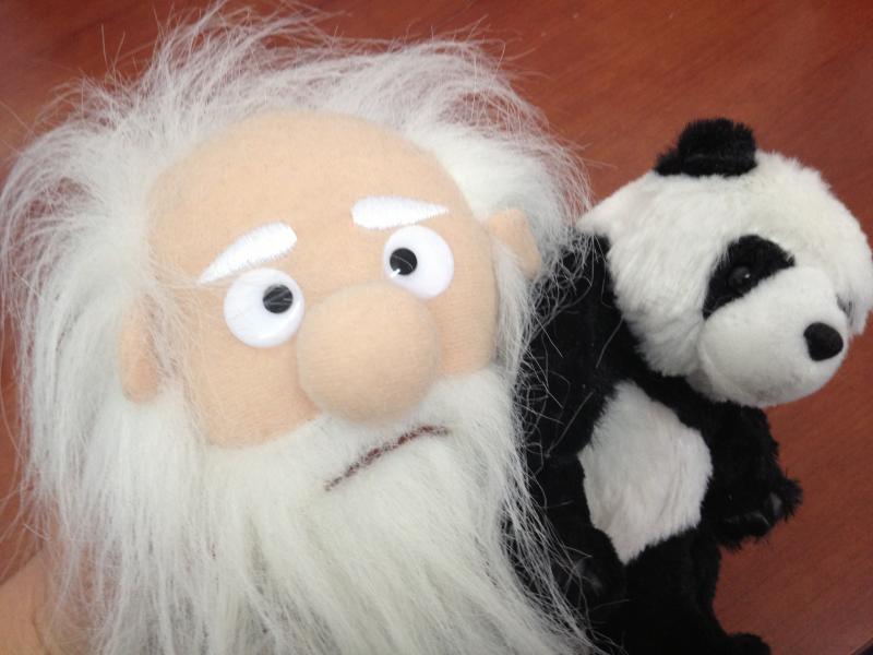 darwin and panda