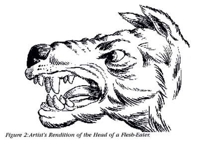 Figure 2: Artist's Rendition of the Head of a Flesh-Eater