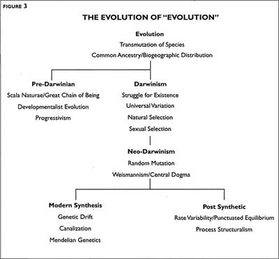 a description of the evolutionary ideas such as common descent and the transmutation of species Book description: the descent of man the transmutation of species and evolution by common descent as the dominant.
