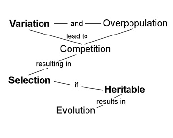 Concept Map About Evolution.Strategies To Help Students Change Naive Alternative Conceptions
