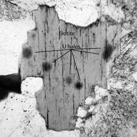 Collins Figure 4: Uranium Halos