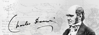 Charles Darwin Montage