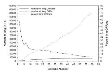 ORFans versus Genome Number: The proportion of ORFans in the genome, as compared to the total number of sequenced genes. As we increase the number of genes sequenced, the percent of ORFans fall. As of 2003, only 5% of long ORFans (ORF's that are unlikley to be simple sequencing artefacts) were unaccounted for. Figure 1, C from Siew, N and Fisher D, PROTEINS: Structure, Function, and Genetics 53:241–251 (2003)