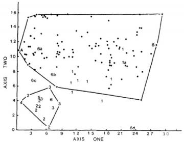 "Dog limbs vs. wild canids: Fig. 7 from Wayne (1986), ""Limb morphology of domestic and wild canids: The influence of development on morphologic change,"" Journal of Morphology 187(3):301-319. It shows an analysis of limb measurements from several species of domestic dogs (dots), other members of the genus Canis (labeled 1), fox-sized species (labeled 2-5) and other species: la) Canis lupus, the grey wolf; 6a) Speothos venaticus, the bushdog; 6b) Nyctereutes procyonoides, the raccoon dog; 6c) Atelocynus microtis, the short-eared dog; A) Chihuahua; B) Irish wolfhound. It shows that dog limbs are much more varied than those of all other members of the family Canidae, including foxes, wolves, and coyotes."