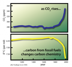 Carbon dioxide is rising because of human actions: Scientists can measure the increase of atmospheric carbon dioxide over the last 150 years. By comparing the type of carbon being added to the atmosphere, they see that the kind of carbon released by burning coal, gasoline, and natural gas is diluting the naturally-occurring carbon dioxide in the atmosphere. Data from Trudinger, et al (1999). Image by Steve Newton for NCSE, in 2012.