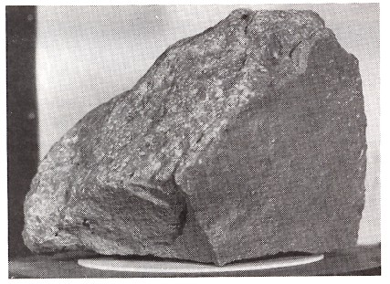 Figure 3: NASA moon rock 14310. This rock was found partially buried on the moon's surface where it had lain since being broken off a larger rock. The surfaces that were buried are angular and unmarked. The exposed surface, in contrast, is covered with many small pits that were made by small space dust particles striking at speeds up to 10 kilometers per second (11,000 miles per hour). This slow process, which has rounded the exposed surface, accounts for nearly all lunar erosion. The rock is about 19 centimeters (71/2 inches) wide.