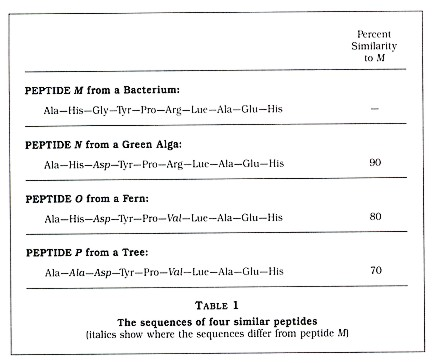 Table 1: The sequences of four similar peptides