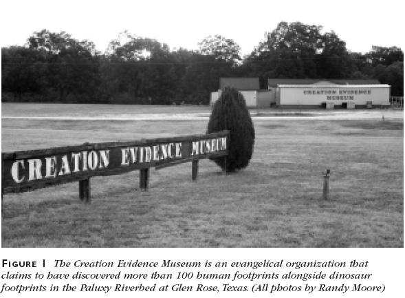 Figure 1: The Creation Evidence Museum is an evangelical organization that claims to have discovered more than 100 human footprints alongside dinosaur footprints in the Paluxy Riverbed at Glen Rose, Texas. (All photos by Randy Moore)
