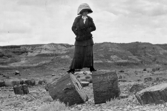 petrified forest natl pk catholic single men Meet thousands of local singles in the petrified forest natl pk, arizona dating area today find your true love at matchmakercom.