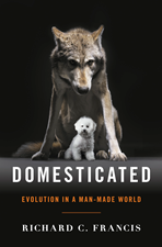 Domesticated cover