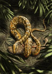 Tetrapodophis amplectus reconstruction. Note tiny visible hand and foot. Copyright Julius T. Csotonyi