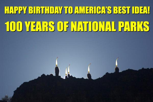 Happy Birthday to the National Parks! Candle flames added to cacti.