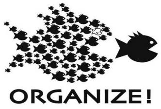 Organize!, school of small fish chasing big fish