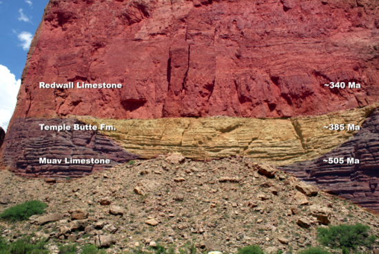 the temple butte formation in Grand Canyon