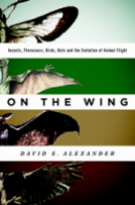 On the Wing cover