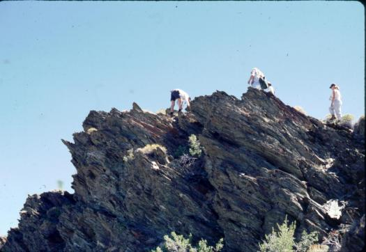 geology students examining the Montenegro Formation, White Mountains, CA