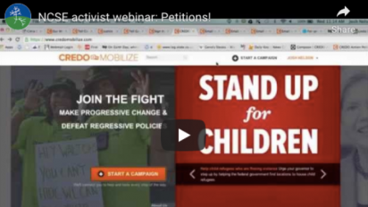 Petitions webinar screenshot