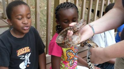 Two children at the Mill Mountain Zoo examining a snake
